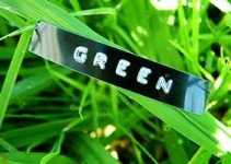 Green-Home-Remodeling
