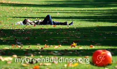 Ridurre-lo-stress-nel-verde