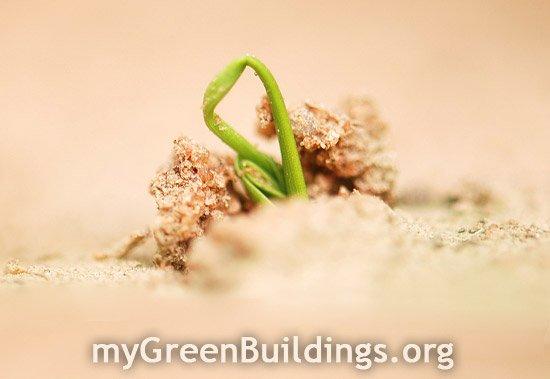 Riqualificazione-Sostenibile-Edifici-Green-Home-Remodeling