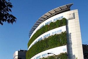 Risparmio-Energetico-Schermature-Solari-Vegetali