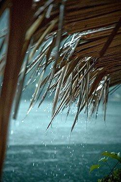 Tetti Freddi in Relazione ai Problemi di Umidità