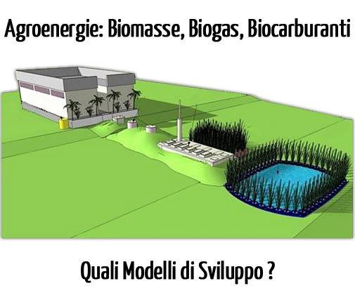Impianti Biogas, Biomasse e Biocarburanti: Incentivi e Modelli di Sviluppo delle Agroenergie