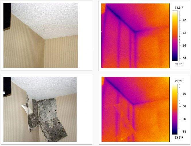 Combattere la muffa in casa rimedi e diagnosi termografica - Muffa e umidita in casa ...
